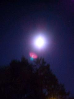 ふたご座を通る月