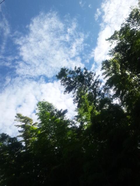 残暑の午後